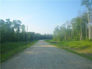 Photo 14: 314 55504 Rge Rd 13: Rural Lac Ste. Anne County Rural Land/Vacant Lot for sale : MLS®# E4213581