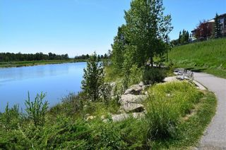 Photo 48: 70 ROYAL CREST Way NW in Calgary: Royal Oak Detached for sale : MLS®# C4237802