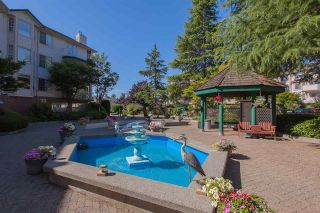"""Photo 20: 315 5360 205 Street in Langley: Langley City Condo for sale in """"Parkway Estates"""" : MLS®# R2317494"""