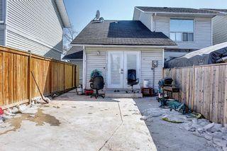 Photo 39: 6636 Temple Drive NE in Calgary: Temple Semi Detached for sale : MLS®# A1085203