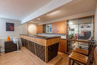 Photo 36: 68 GAINSBOROUGH Avenue: St. Albert House for sale : MLS®# E4240559