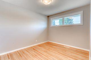 Photo 24: 9104 156 Street NW in Edmonton: Zone 22 House for sale : MLS®# E4254125