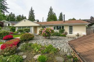 Main Photo: 764 BLYTHWOOD Drive in North Vancouver: Delbrook House for sale : MLS®# R2592947