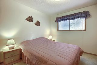 Photo 14: 4323 49 Street NE in Calgary: Whitehorn Detached for sale : MLS®# A1043612