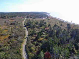 Photo 4: Lots 19-20 Youngs Road in East Green Harbour: 407-Shelburne County Vacant Land for sale (South Shore)  : MLS®# 202022915