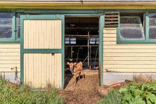 "Photo 19: 12591 209 Street in Maple Ridge: Northwest Maple Ridge Agri-Business for sale in ""HAMPTON FARMS"" : MLS®# C8040444"