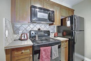 Photo 15: 306 420 3 Avenue NE in Calgary: Crescent Heights Apartment for sale : MLS®# A1105817
