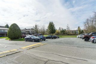 "Photo 39: 25 27456 32 Avenue in Langley: Aldergrove Langley Townhouse for sale in ""Cedar Park Estates"" : MLS®# R2530496"