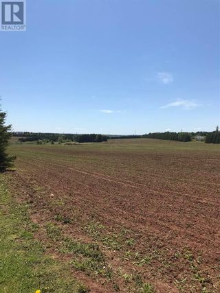 Photo 4: 339 Malpeque Road in Charlottetown: Vacant Land for sale : MLS®# 201821902