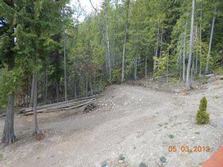 Photo 21:  in Anglemont: North Shuswap House for sale (Shuswap)  : MLS®# 10063369