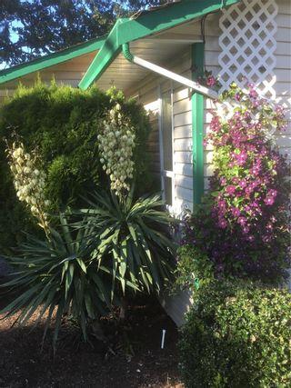 Photo 38: 2681 Selwyn Rd in : La Mill Hill House for sale (Langford)  : MLS®# 864268