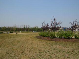 Photo 37: 17467 77 Street in Edmonton: Zone 28 House for sale : MLS®# E4257447