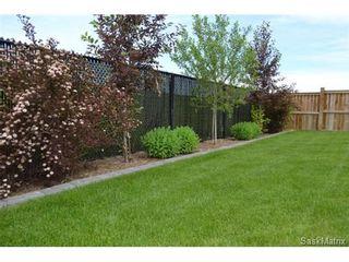 Photo 18: 355 Thode AVENUE in Saskatoon: Willowgrove Single Family Dwelling for sale (Saskatoon Area 01)  : MLS®# 460690