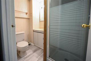 Photo 19: 753 Townsend Avenue in Winnipeg: Fort Richmond Residential for sale (1K)  : MLS®# 202112890