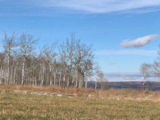 Photo 19: 43062 TOWNSHIP ROAD 250 in Rural Rocky View County: Rural Rocky View MD Land for sale : MLS®# A1042976
