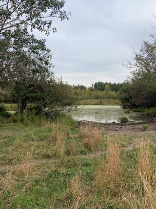 Photo 3: RR 275 Twp 482: Rural Leduc County Rural Land/Vacant Lot for sale : MLS®# E4261137