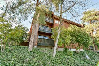 """Photo 20: 103 37 AGNES Street in New Westminster: Downtown NW Condo for sale in """"Agnes Court"""" : MLS®# R2565240"""