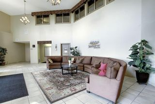 Photo 28: 327 52 CRANFIELD Link SE in Calgary: Cranston Apartment for sale : MLS®# A1104034