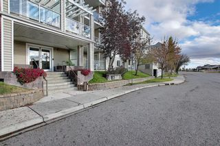Photo 1: 410 290 Shawville Way SE in Calgary: Shawnessy Apartment for sale : MLS®# A1138417