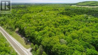 Photo 4: 1832 COUNTY RD. 40 Road in Quinte West: Vacant Land for sale : MLS®# 40154512