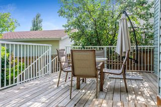 Photo 23: 422 Country Hills Drive NW in Calgary: Country Hills Detached for sale : MLS®# A1145703