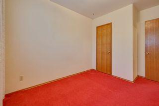 Photo 30: 7228 131A Avenue in Edmonton: Zone 02 House for sale : MLS®# E4252234
