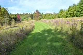 Photo 39: 7150 4th Concession Rd in New Tecumseth: Rural New Tecumseth Freehold for sale : MLS®# N5388663