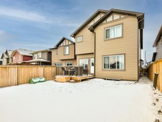 Photo 48: 68 Thoroughbred Boulevard: Cochrane Detached for sale : MLS®# A1071565