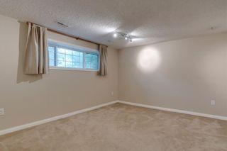 Photo 23: 6807 24 Avenue NE in Calgary: Pineridge Detached for sale : MLS®# C4258740