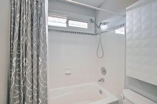 Photo 12: 2735 41A Avenue SE in Calgary: Dover Detached for sale : MLS®# A1082554
