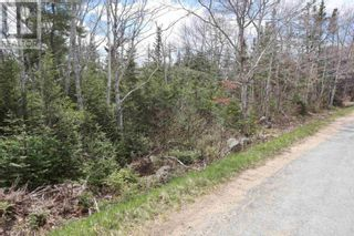 Photo 10: Lot St Catherines River Road in Port Joli: Vacant Land for sale : MLS®# 202111302