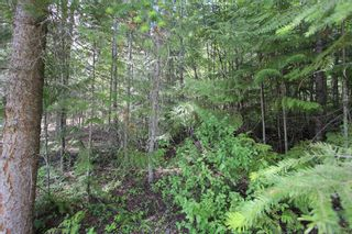 Photo 7: Lot 367 Fairview Road in Anglemont: North Shuswap, Anglemont Land Only for sale (Shuswap)  : MLS®# 10133376