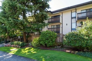 "Photo 29: 103 330 CEDAR Street in New Westminster: Sapperton Condo for sale in ""Crestwood Cedars"" : MLS®# R2101856"