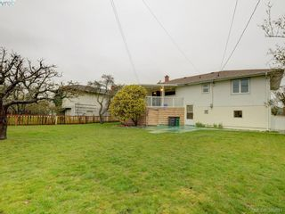 Photo 13: 2820 Richmond Rd in VICTORIA: SE Camosun House for sale (Saanich East)  : MLS®# 783639