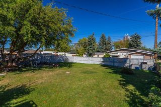 Photo 19: 4628 3 Street NE in Calgary: Greenview Detached for sale : MLS®# A1128741