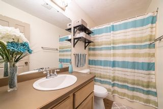 Photo 15: 49 Templeson Crescent NE in Calgary: Temple Detached for sale : MLS®# A1089563
