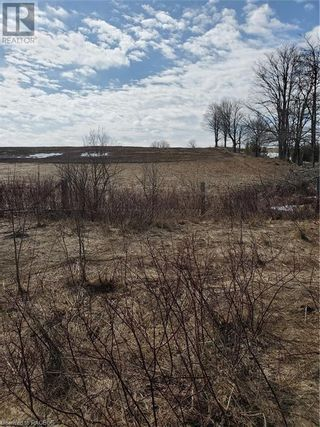 Photo 5: PT LT 21-22 GREY ROAD 14 in Grey Highlands: Vacant Land for sale : MLS®# 40088643