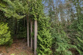 Photo 15: 3563 S Arbutus Dr in : ML Cobble Hill House for sale (Malahat & Area)  : MLS®# 861746