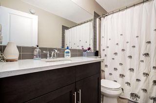 Photo 26: 459 Nolan Hill Drive NW in Calgary: Nolan Hill Detached for sale : MLS®# A1085176