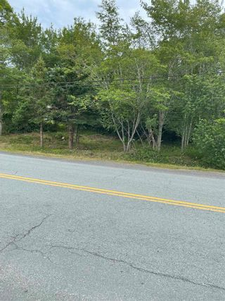 Photo 6: 329 Ross Road in Westphal: 15-Forest Hills Vacant Land for sale (Halifax-Dartmouth)  : MLS®# 202115290