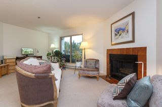 Photo 5: 104 1241 Fairfield Rd in : Vi Fairfield West Condo for sale (Victoria)  : MLS®# 862113