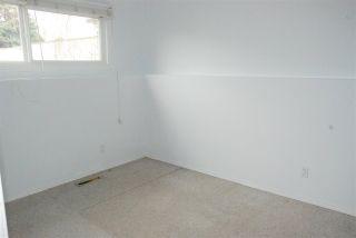 Photo 13: 11403 51 Avenue in Edmonton: Zone 15 House for sale : MLS®# E4241624
