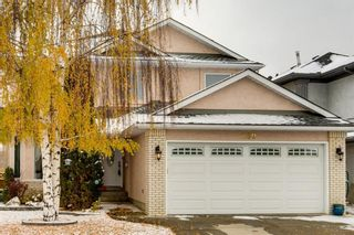 Photo 1: 260 Douglasbank Place SE in Calgary: Douglasdale/Glen Detached for sale : MLS®# A1042919
