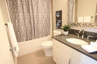 Photo 13: 10604/06/08 61 Avenue in Edmonton: Zone 15 House Triplex for sale : MLS®# E4225377