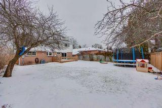 Photo 20: 224 Sylvan Ave in Toronto: Guildwood Freehold for sale (Toronto E08)  : MLS®# E4356783
