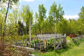 Photo 32: 2847 PTARMIGAN Road in Smithers: Smithers - Rural House for sale (Smithers And Area (Zone 54))  : MLS®# R2457122