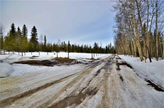 Photo 19: 9805 MURALT Road in Prince George: Beaverley House for sale (PG Rural West (Zone 77))  : MLS®# R2252294