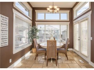 Photo 17: 34 CHAPALA Court SE in Calgary: Chaparral House for sale : MLS®# C4108128