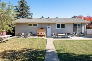 Photo 37: 279 Lynnwood Way NW in Edmonton: Zone 22 House for sale : MLS®# E4265521