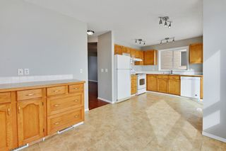 Photo 12: 36 SHAWINIGAN Drive SW in Calgary: Shawnessy Detached for sale : MLS®# A1009560